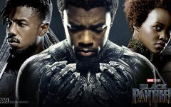 New and Old Traditions Unite in Black Panther