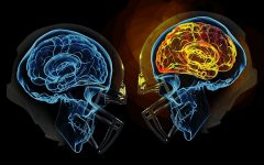 The Hidden Danger of Concussions in the NFL